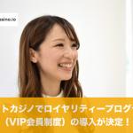 ビットカジノでロイヤリティープログラム(VIP会員制度)導入!