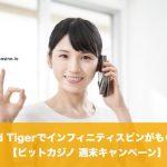 【11月9日まで】Red Tigerでインフィニティスピンがもらえる│ビットカジノ