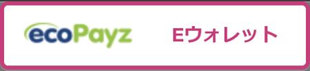クイーンカジノのエコペイズ(ecoPayz)の出金時間の目安は?
