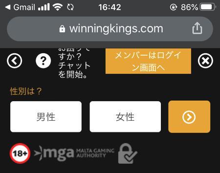 スマホやタブレット端末からウイニングキングスに会員登録する方法 その5