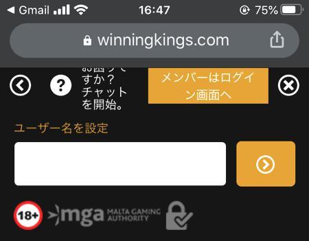 スマホやタブレット端末からウイニングキングスに会員登録する方法 その11