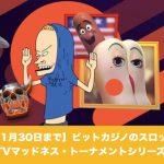 【11月30日まで】ビットカジノのスロットでTVマッドネス・トーナメントシリーズ!