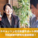 マネキャッシュの日本語サポート体制は?対応時間や評判を徹底解説!