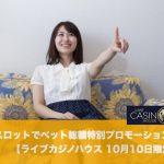 【10月10日限定】ライブカジノハウスのスロットでベット総額特別プロモーション開催!
